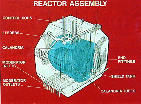 CANDU Reactor and Fuel Design Nuclear Power Diagram